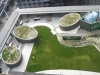 Greenscape_Roof_gardens_1[1]
